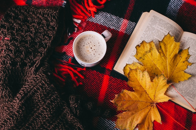 Book and autumn leaves on red plaid Premium Photo
