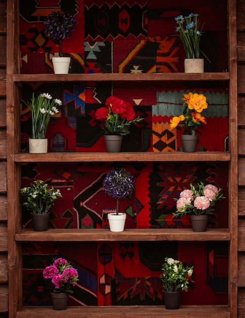 A bookshelf with pots of mixed natural flowers Free Photo