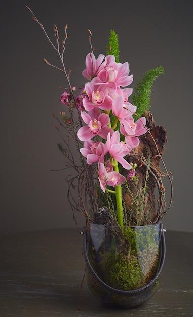 ピンクの蘭の花束 無料写真