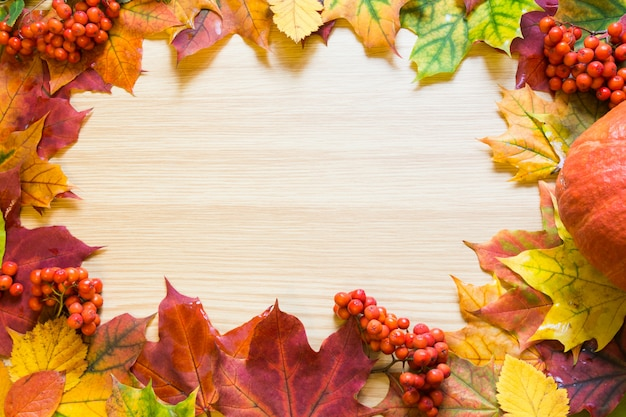 Border of autumn leaves, pumpkin and rowanberry on wooden board. copy space. fall concept. Premium Photo