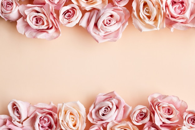 Border of beautiful fresh sweet pink rose isolated on beige background Free Photo