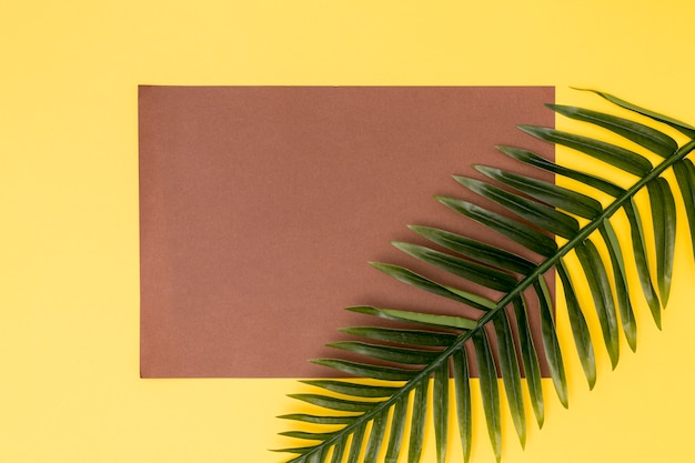 Botanical decor and empty brown card Free Photo