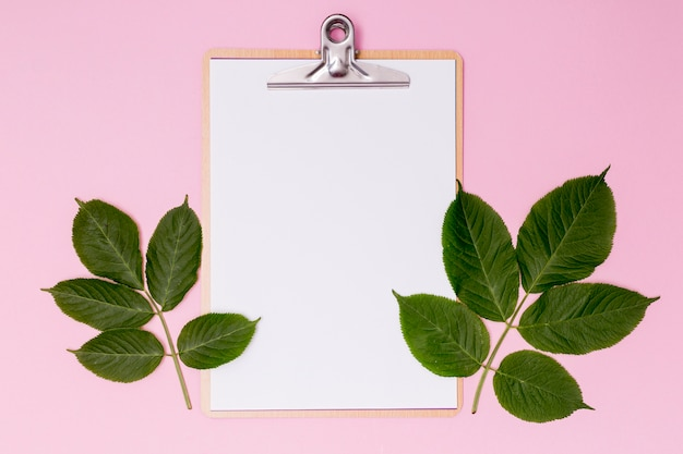 Botanical decor with empty clipboard Free Photo