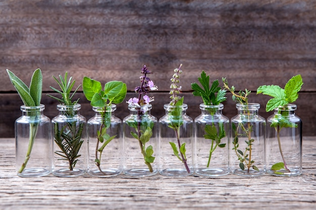 Bottle of essential oil with herbs set up on old wooden background . Premium Photo