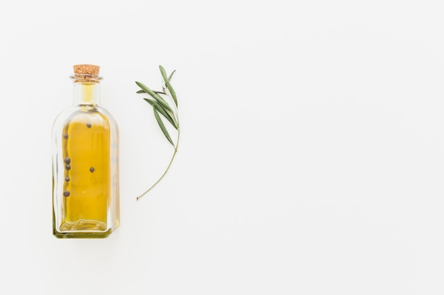 Bottle of oil with green branch Free Photo