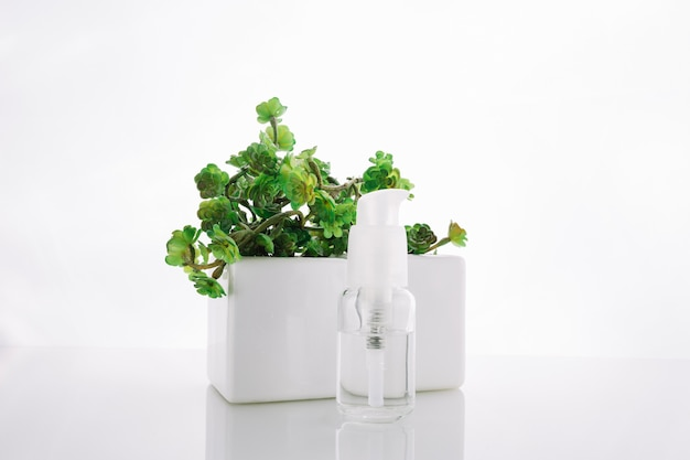 Bottle with lotion near potted plant Free Photo