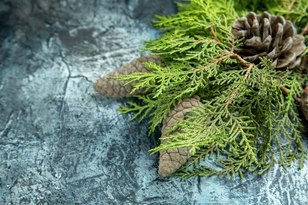 Vista dal basso chiuso e aperto pigne nelle quali rami di pino sulla superficie grigia spazio libero Foto Gratuite