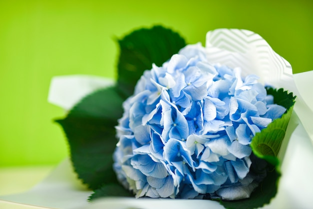 Bouquet of blue flowers on a green background Premium Photo