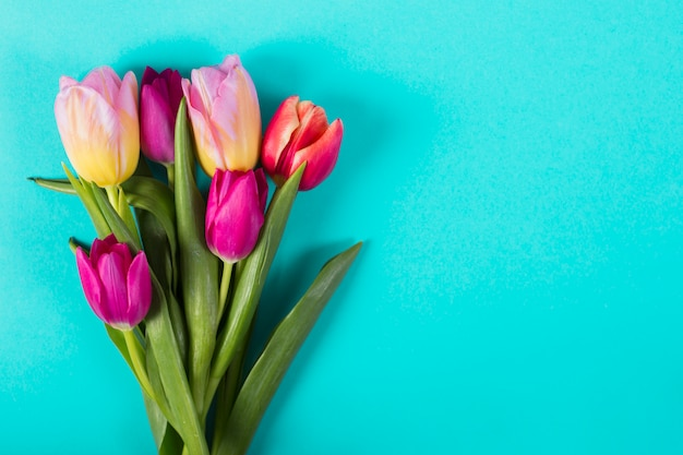 Bouquet of bright tulips Free Photo