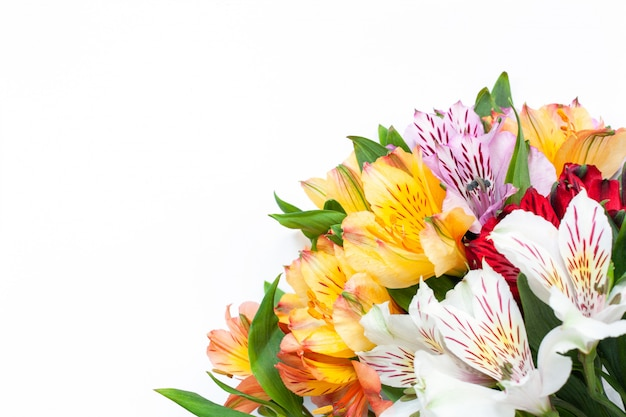 Bouquet of colorful flowers alstroemeria on white background Premium Photo