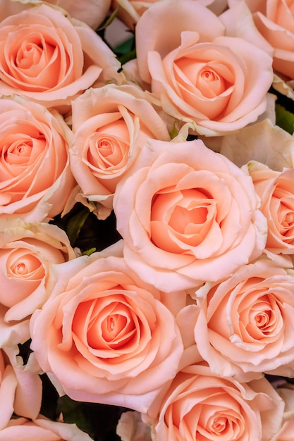 Bouquet of delicate roses . a background of floral roses. beautiful flowers. a gift for the holiday. fresh flowers. Premium Photo