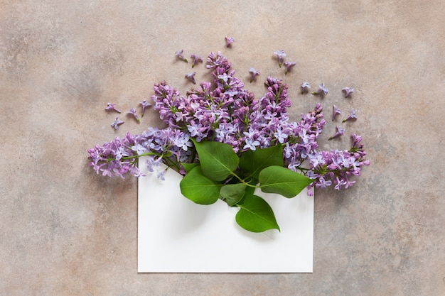 A bouquet of fresh fragrant lilac in a paper envelope Premium Photo