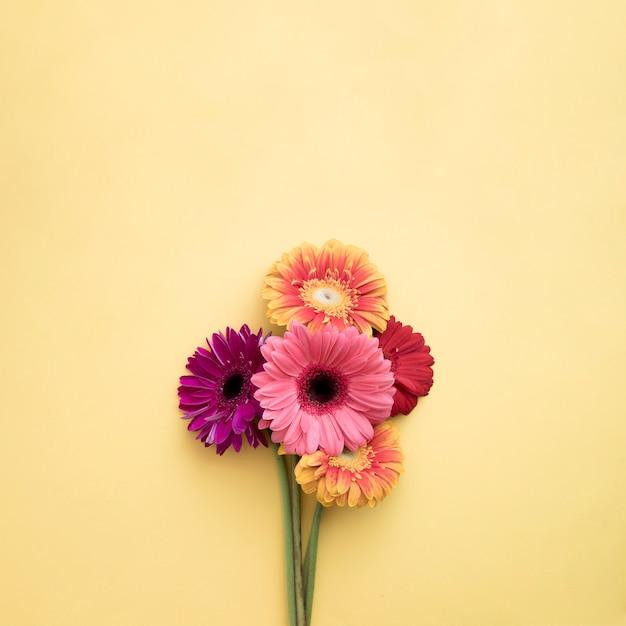 Bouquet of gerberas Free Photo