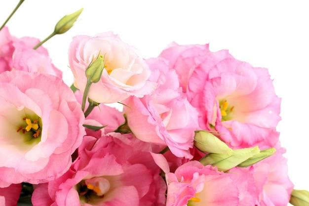 白で隔離されるトルコギキョウの花の花束 Premium写真