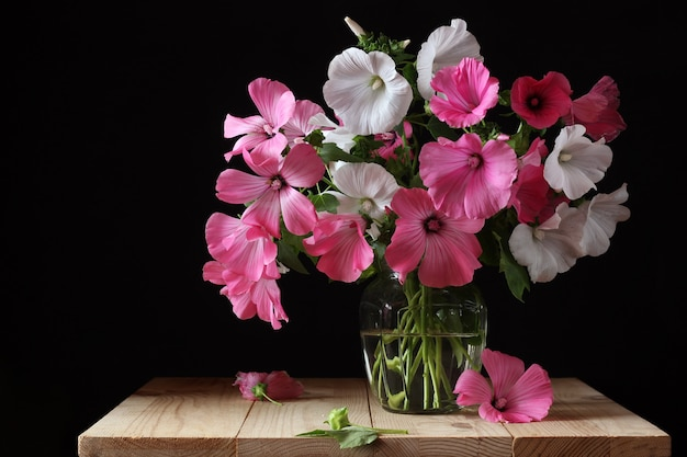 Bouquet of pink and white lavater in a glass vase Premium Photo
