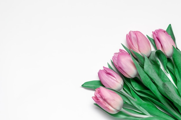 Bouquet of spring flowers, pink tulips on white background with copy space Premium Photo
