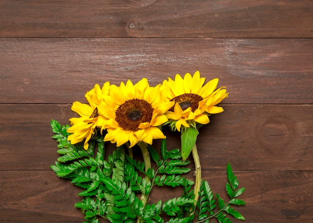 Bouquet of sunflowers and fern leaves Free Photo