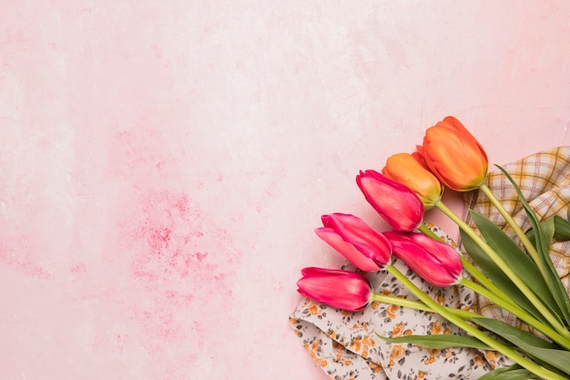 Bouquet of tulips on shawls Free Photo