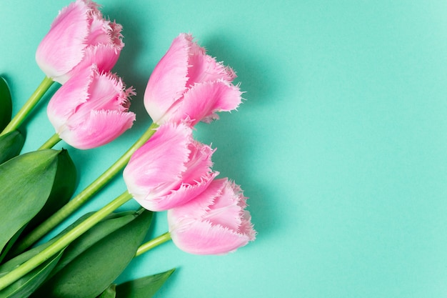 Bouquet of tulips spring flowers on color festive background Premium Photo