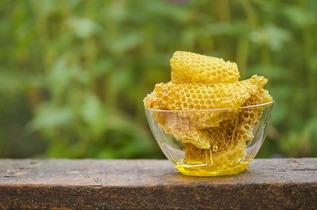 Bowl with fresh honeycombs and honey.  organic natural ingredients. space for lettering Premium Photo