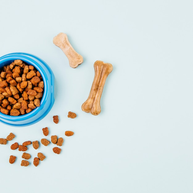 Bowl with pet food Free Photo