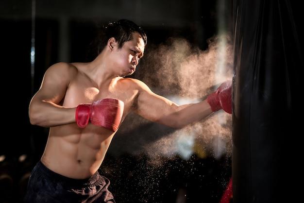 Boxer boxing in punching bag Premium Photo