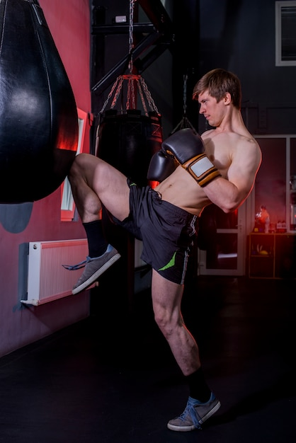 Boxer boy posing at the gym Free Photo
