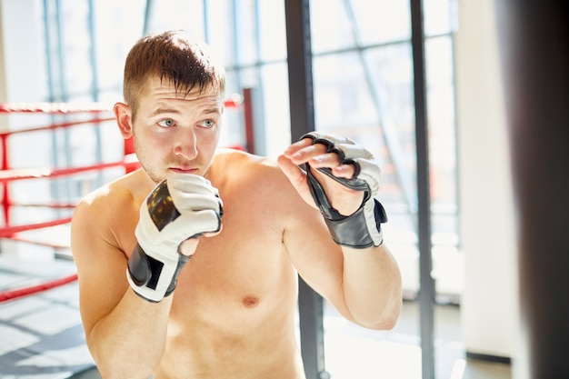 Boxer practicing in sunlight fighting club Free Photo