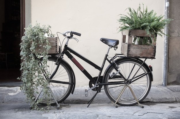 Boxes with plant on bycicle Premium Photo