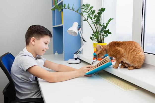 猫の読書とデスクで少年 無料写真
