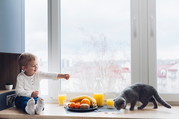 Boy and cat Free Photo