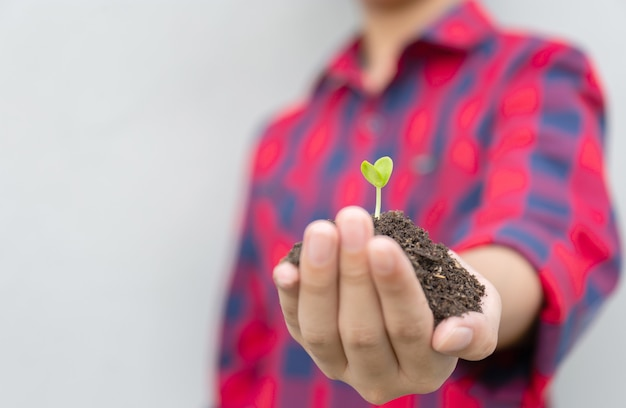 Boy holding a plant in hands Premium Photo