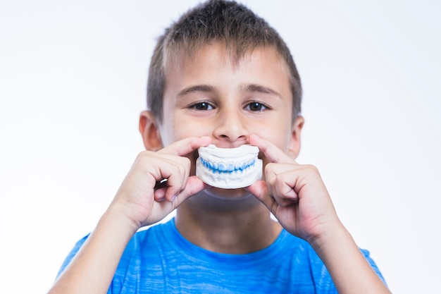 Boy holding teeth plaster mold on white background Premium Photo