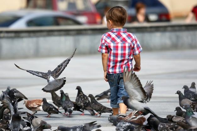 Мальчик гуляет возле стай голубей Premium Фотографии