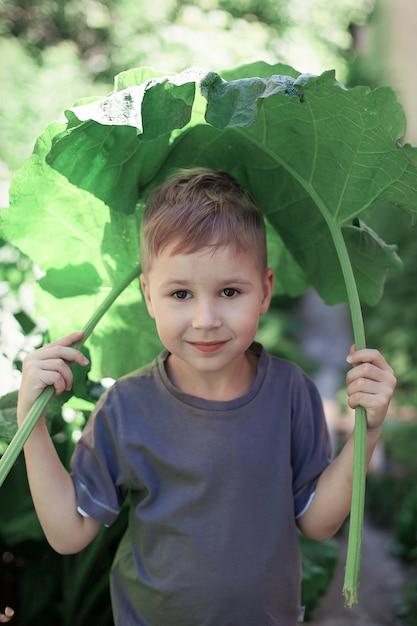 少年は雨でごぼうの葉で覆われていた Premium写真
