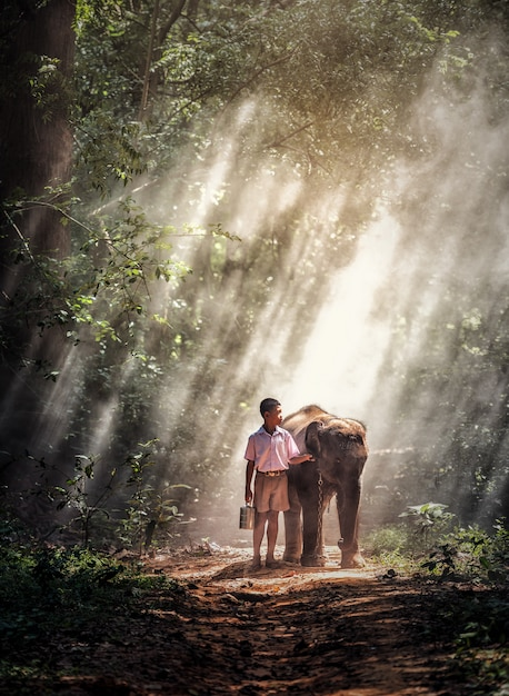 Boy with baby elephant in forest Premium Photo