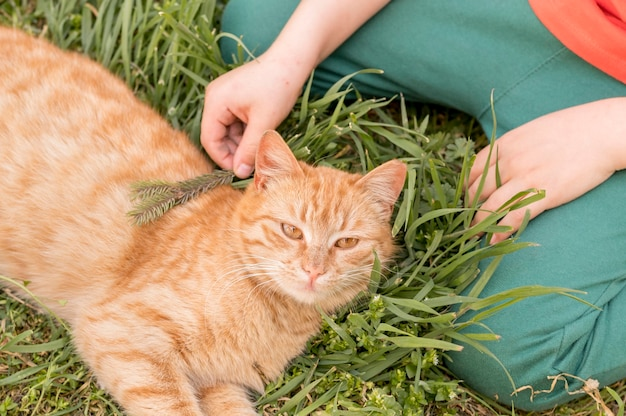 Ragazzo con gatto all'aperto Foto Gratuite