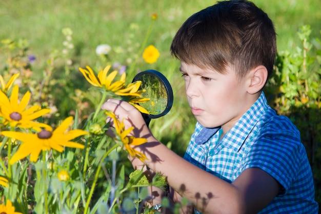 Boy with magnifying glass in summer garden Premium Photo