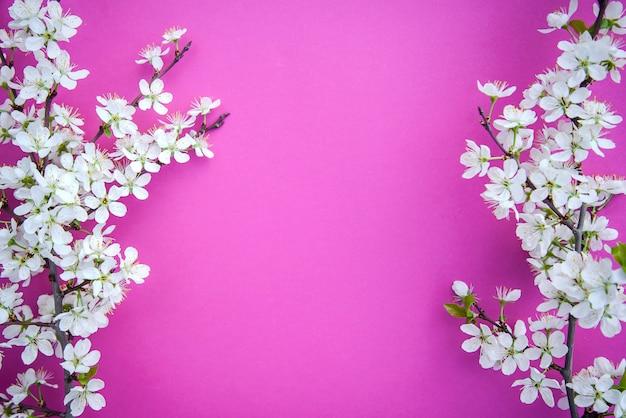 A branch of plum blossoms Premium Photo