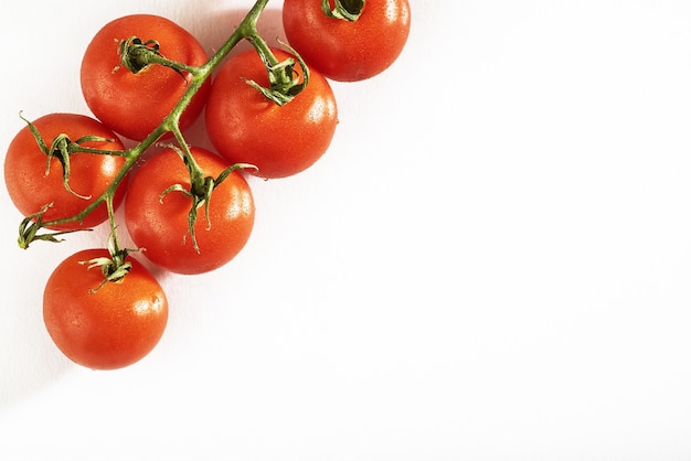 Branch of red organic tomatoes on a white. Free Photo
