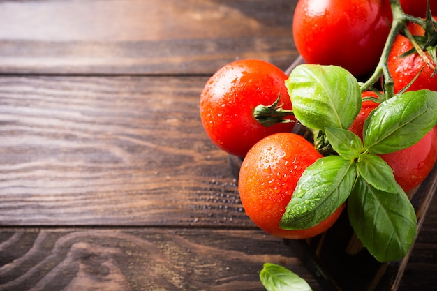 Branch of ripe natural tomatoes and basil leaves Premium Photo