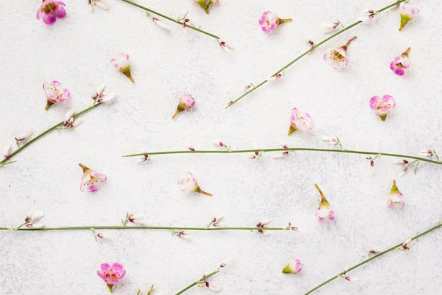 Branches of flowers on table Free Photo