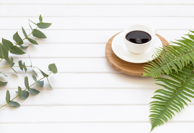 Branches of green eucalyptus, fern and cup of black coffee. Free Photo
