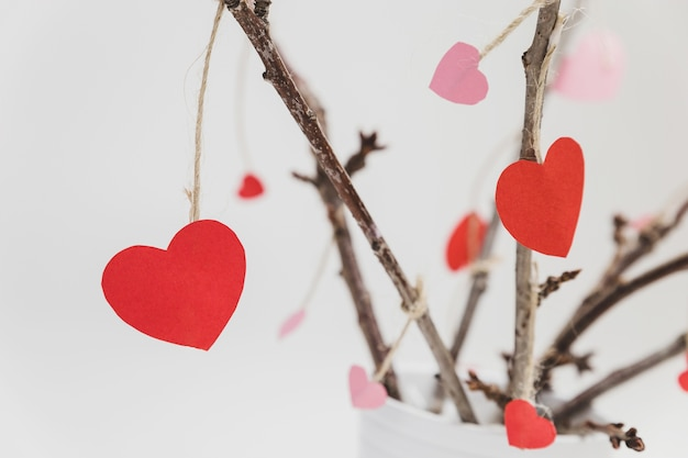 Branches of a plant in a white pot with hearts hanging from close up Free Photo