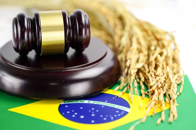 Brazil flag and judge hammer Premium Photo