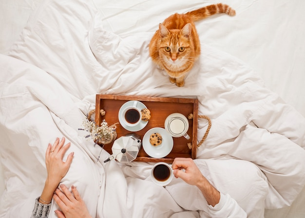 Breakfast in bed Free Photo