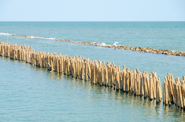 Breakwater. bamboo poles and rock using for break sea wave Premium Photo
