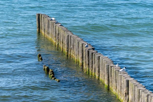 Breakwater on beach Premium Photo
