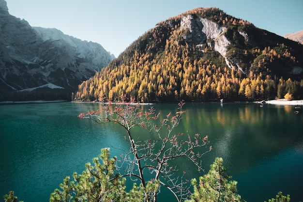 Scenario mozzafiato del parco naturale di fanes-sennes-braies braies, italia Foto Gratuite