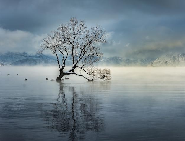 Scatto mozzafiato del lago wanaka nel villaggio di wanaka, nuova zelanda Foto Gratuite
